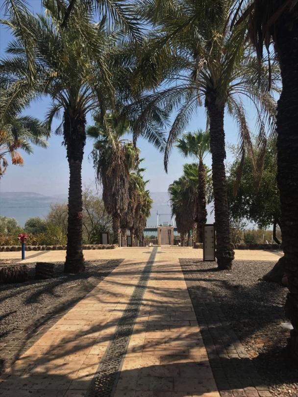 Capernaum Harbour