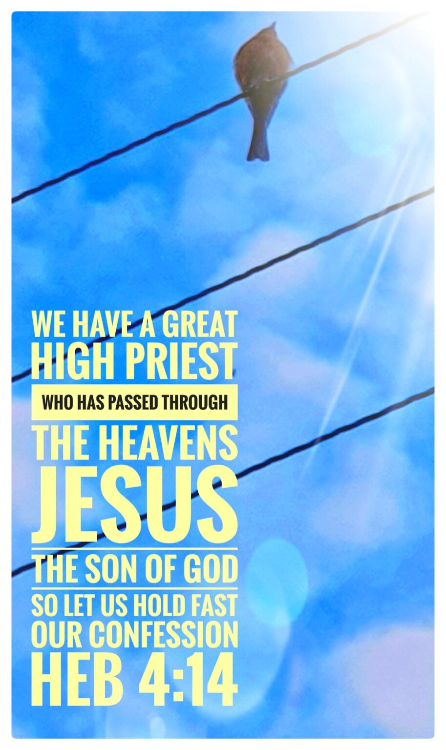 Jesus our High Priest