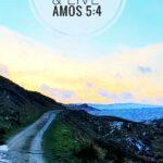 Chelburn reservoir - Psalm 24