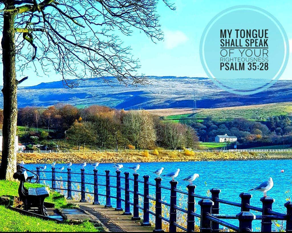 Hollingworth Lake - Psalm 35