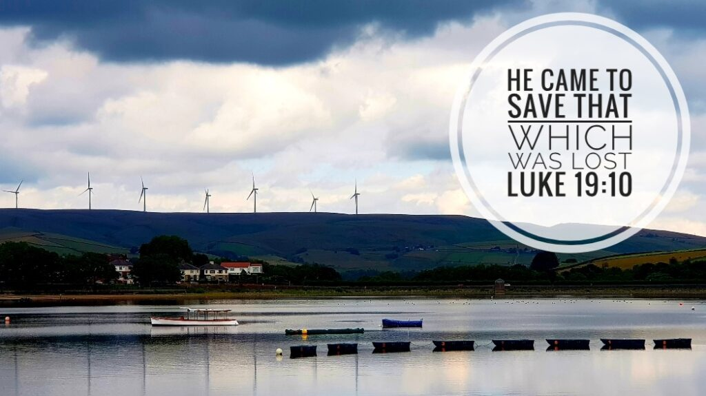 Hollingworth Lake - the lost sheep