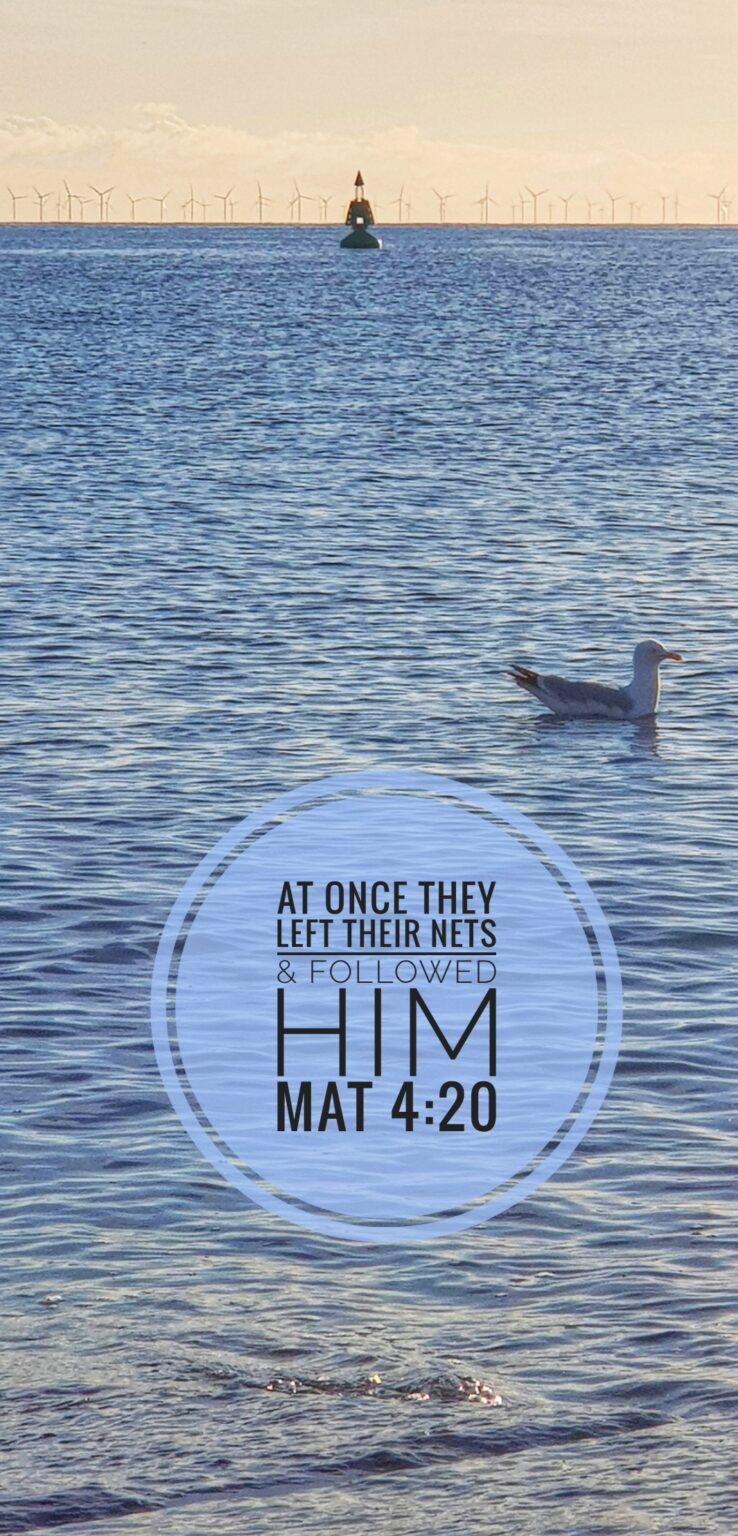 Llandudno Bay - The Parable of the Net