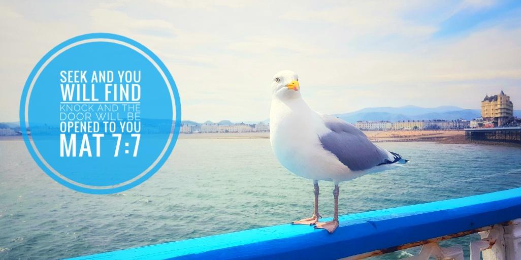 Llandudno Pier - Seek and you will find